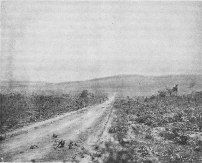 Stevenson Road 1899.jpg